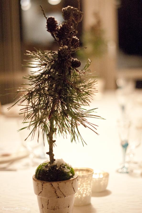 Minijuletræ1