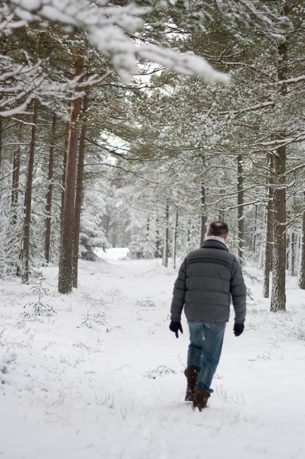 Sne15