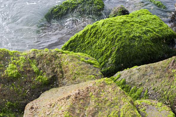 Lønstrup-strand6