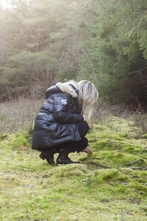 Skagen-klitplantage7