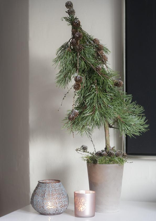 Minijuletræ5