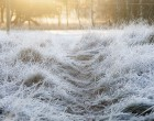 Frosty5