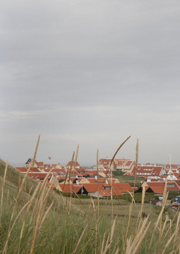 Skagen8