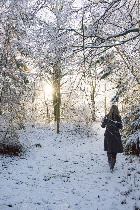 winter-december-12