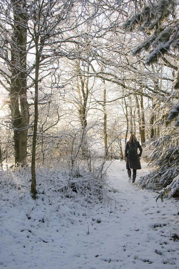 winter-december-13