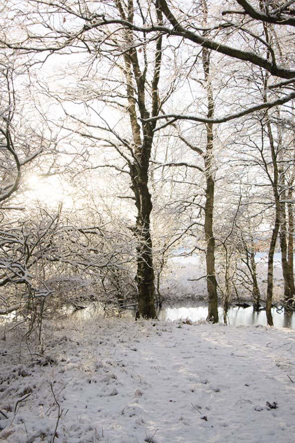 winter-december-14